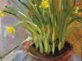 No.38 Spring Daffodils